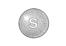skittle.png