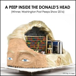 a-peep-inside-the-donalds-head-hero